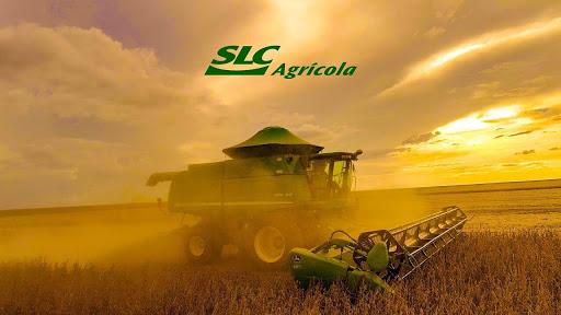 SLC Agrícola (SLCE3) arrenda terreno da Agrícola Xingu slc agrícola (slce3) arrenda terreno da agrícola xingu SLC Agrícola (SLCE3) arrenda terreno da Agrícola Xingu slc slce3